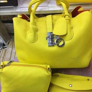 Dior Cosmedic Handbag  and Cosmedic bag
